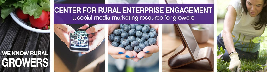 Center for Rural Enterprise Engagement